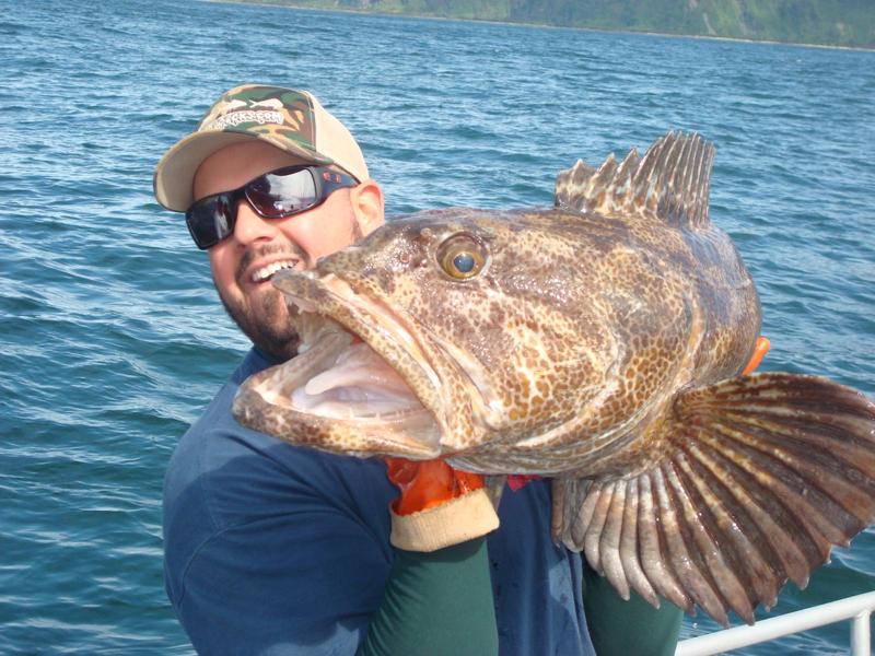 Fish charters seward alaska autos post for Seward alaska fishing