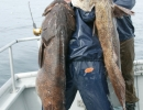 Lingcod Fishing Photos